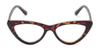 Front of The Robin in Red Tortoise