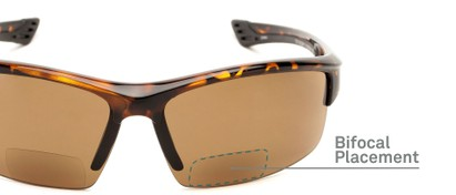 Detail of The Roster Bifocal Reading Sunglasses in Tortoise with Amber