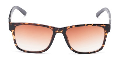 Front of The Royal Reading Sunglasses in Glossy Tortoise with Amber