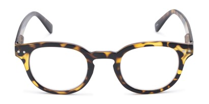 Front of The Sailor in Tortoise