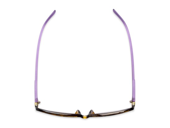 Overhead of The Shandy Reading Sunglasses in Brown Tortoise/Purple with Smoke