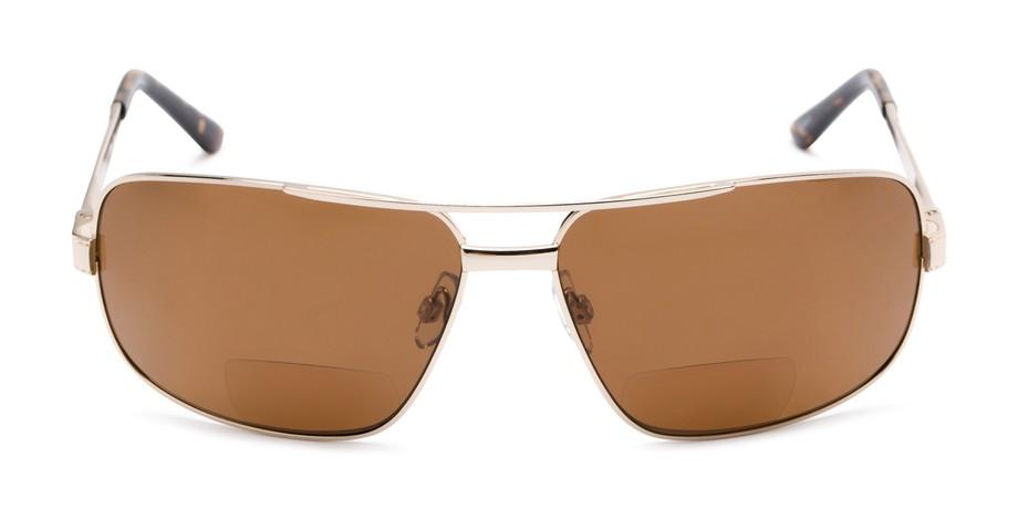 a761613bd9 Tinted Bifocal Reading Sunglasses