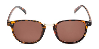 Front of The Silas Reading Sunglasses in Tortoise with Amber
