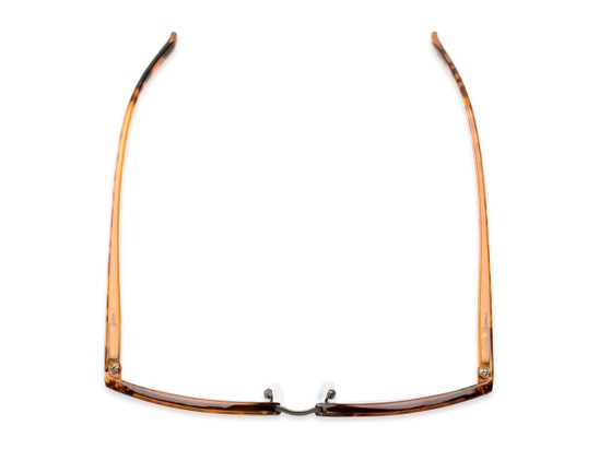 Overhead of The Thorn in Brown Tortoise/Bronze