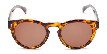 Front of The Tupelo Reading Sunglasses in Glossy Tortoise with Amber