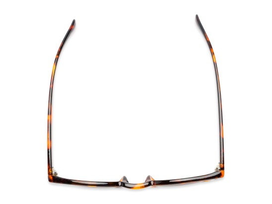 Overhead of The Tupelo Reading Sunglasses in Glossy Tortoise with Amber