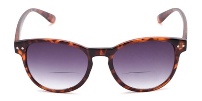 Front of The Vale Bifocal Reading Sunglasses in Matte Tortoise with Smoke