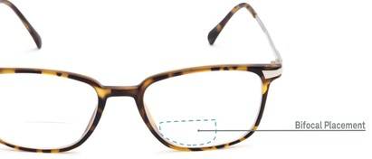 Detail of The Wetherford Bifocal in Tortoise/Silver