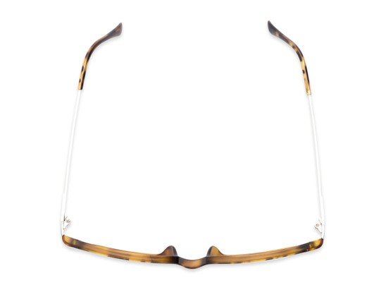 Overhead of The Wetherford Bifocal in Tortoise/Silver