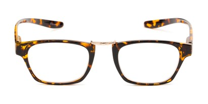 Front of The Wilder Hanging Reader in Tortoise with Gold