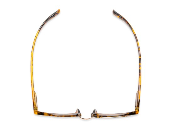 Overhead of The Wilder Hanging Reader in Tortoise with Gold