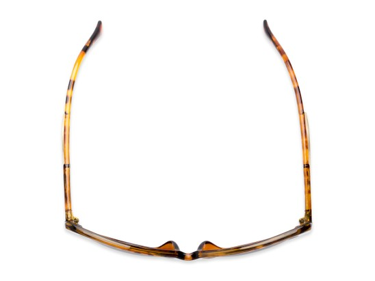 Overhead of The Wink Bifocal Reading Sunglasses in Tortoise with Smoke