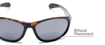 Detail of The Zeek Bifocal Reading Sunglasses in Glossy Tortoise with Grey