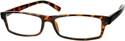 Angle of The Sacramento in Brown Tortoise Frame, Women's and Men's