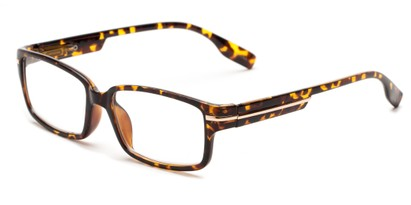 Angle of The Gus in Tortoise, Women's and Men's Rectangle Reading Glasses