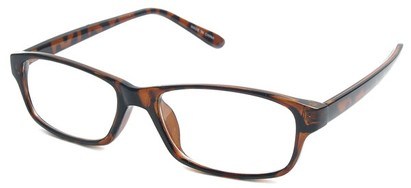 Angle of The Monroe in Tortoise Frame, Women's and Men's
