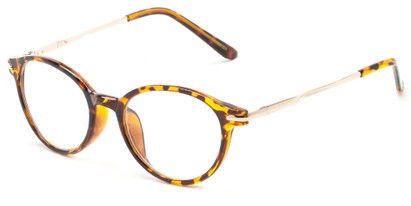 Angle of The Dorian in Tortoise, Women's and Men's Round Reading Glasses
