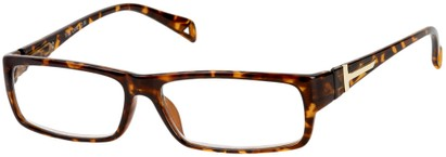 Angle of The Chase in Tortoise, Women's and Men's Rectangle Reading Glasses