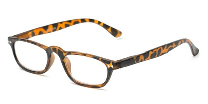 Angle of The Sunset in Tortoise, Women's and Men's Rectangle Reading Glasses