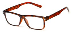 Angle of The Redwood in Tortoise, Women's and Men's Retro Square Reading Glasses